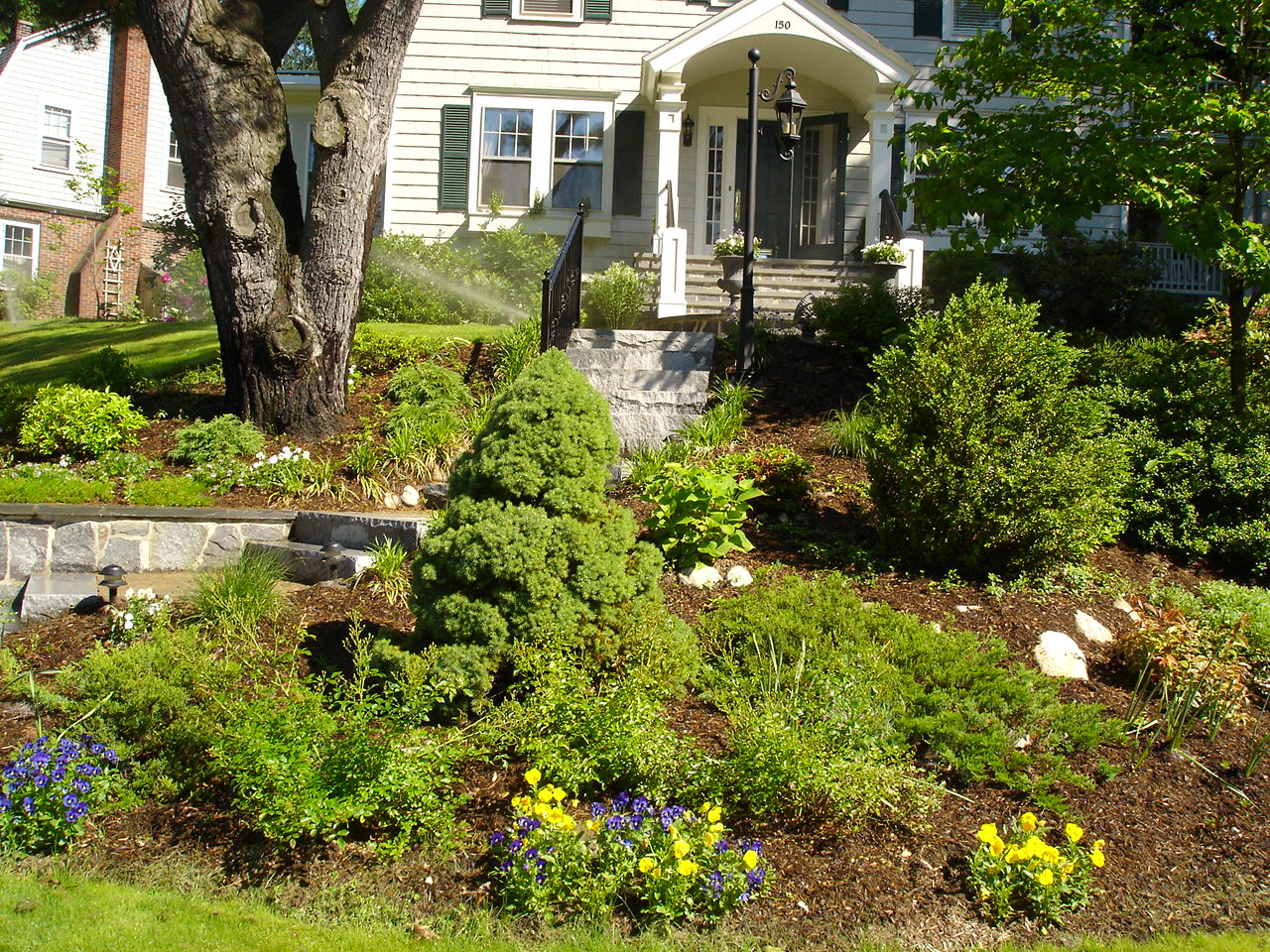 Upgrade your landscape with new plants and shrubs with our landscape experts.